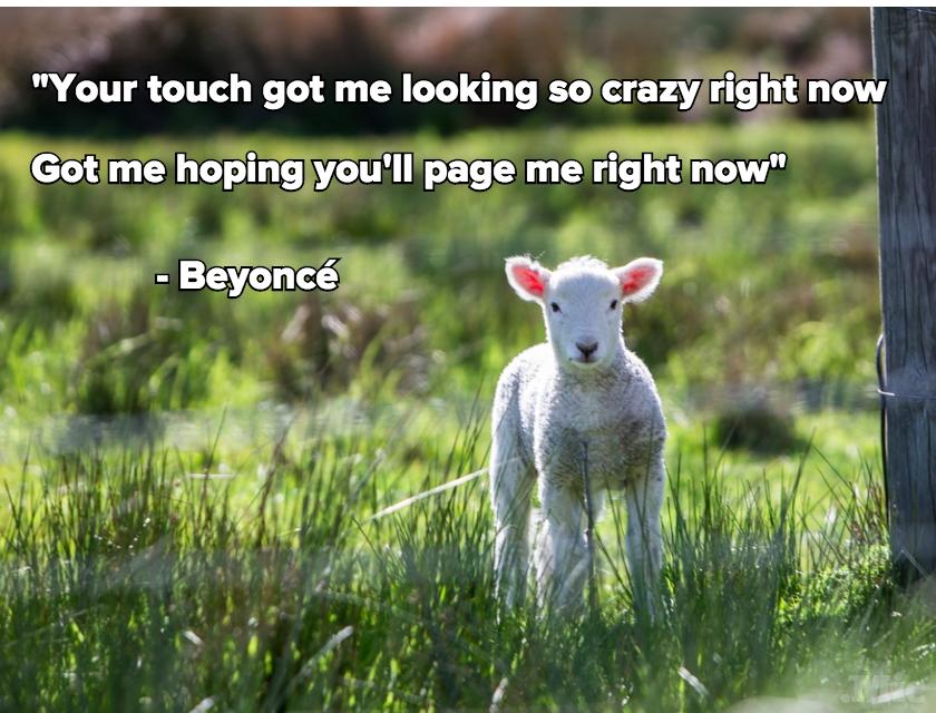 Turned beyonc 233 lyrics into inspirational memes you re welcome mic