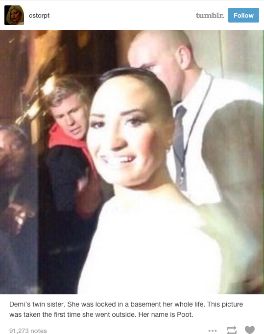 Demi Lovato Not a Fan of Poot Lovato Meme