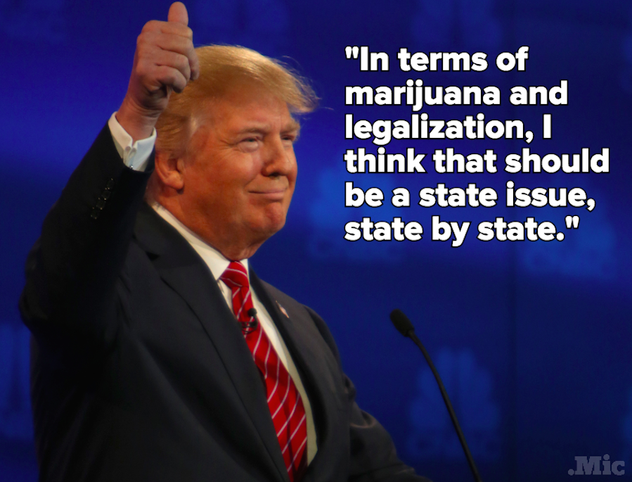 Trump Says Marijuana Policy Should Be Left to the States