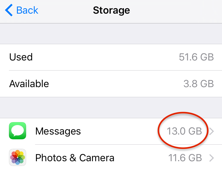 iPhone Storage Full? Here's What's Secretly Taking Up All the Space on Your Phone