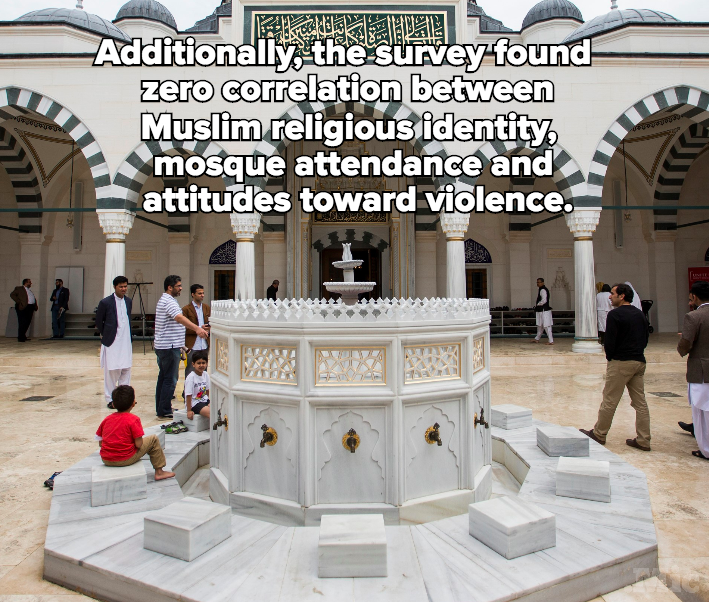 Muslim Americans Are Model Citizens, According to a New Poll
