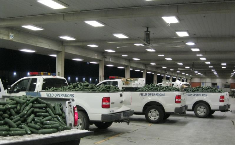 Drug Smugglers Tried to Sneak 2,493 Pounds of Weed Into the US in Giant Fake Carrots